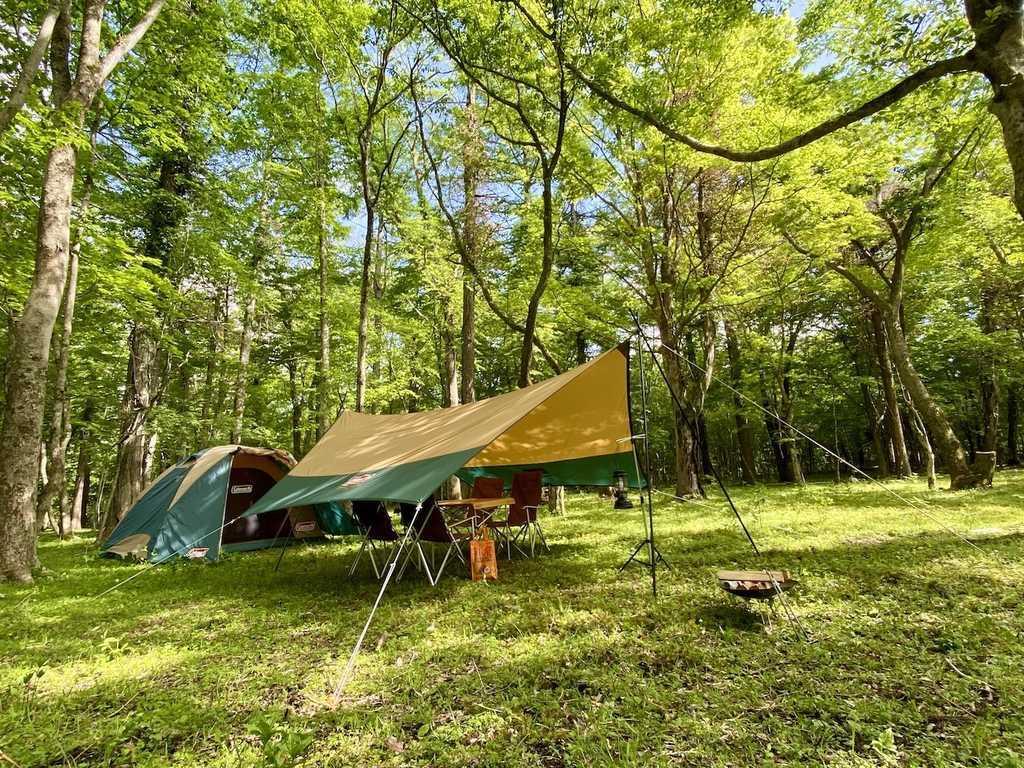 https://www.nap-camp.com/yamanashi/13955