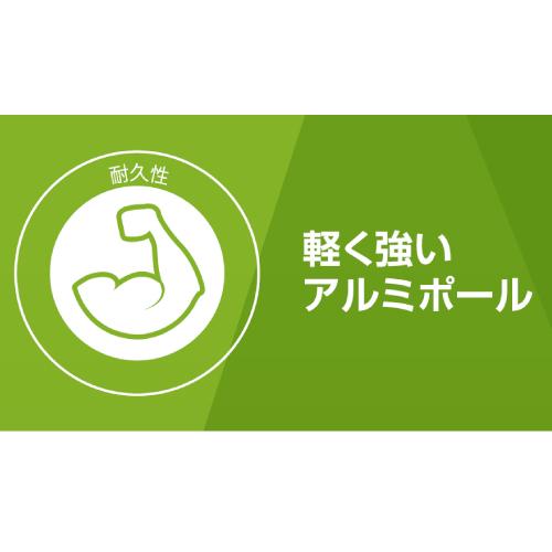 https://ec.coleman.co.jp/item/IS00060N05006.html